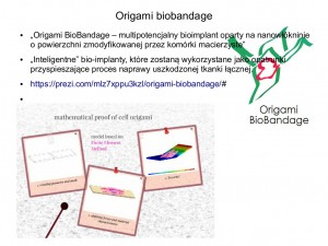 origami biology11