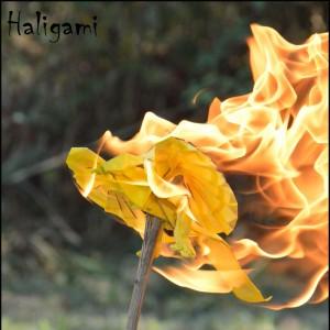 halina1