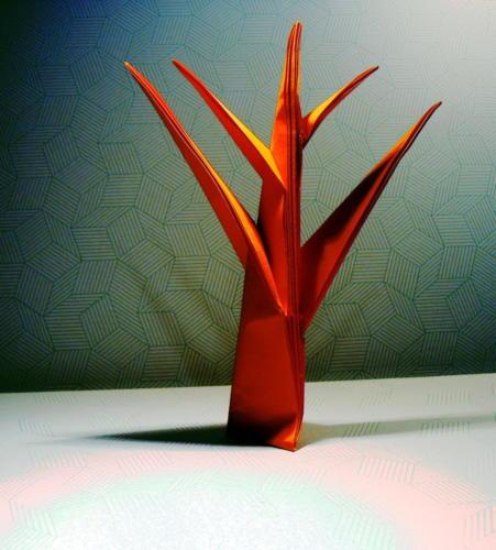 drzewo - Jun Maekawa